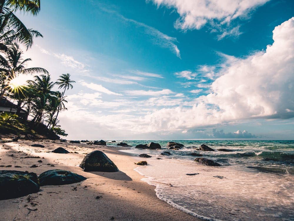 Hawaii seashore