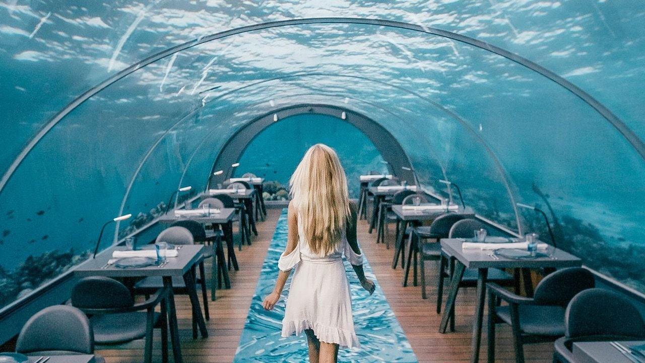 Dine Under Water