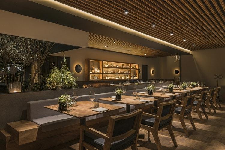 11 Best Restaurants In Mexico City 1